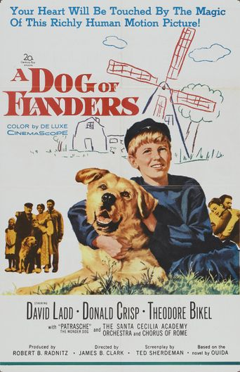 A Dog of Flanders Poster