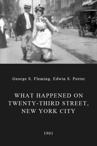 Watch What Happened on Twenty-Third Street, New York City