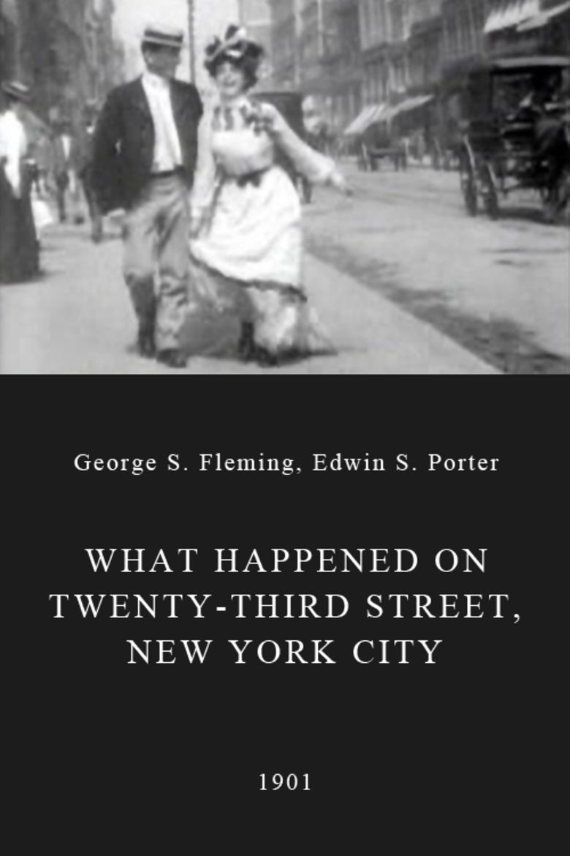 What Happened on Twenty-Third Street, New York City Poster