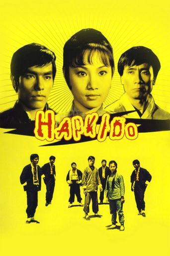Hapkido Poster