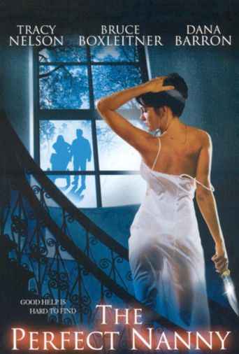 The Perfect Nanny Poster