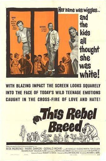 Black Rebels Poster