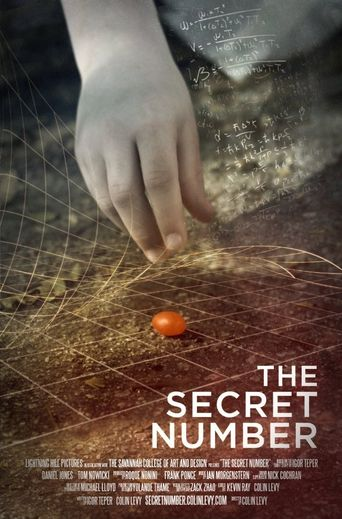 The Secret Number Poster