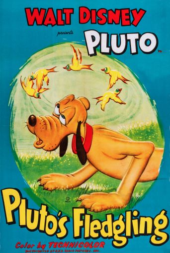 Pluto's Fledgling Poster