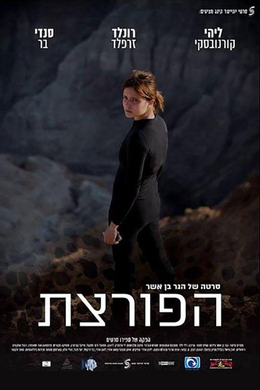 The Burglar Poster