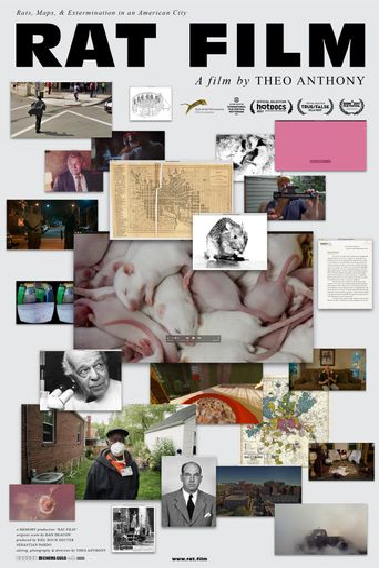 Rat Film Poster