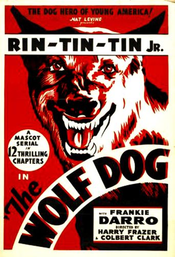 The Wolf Dog Poster