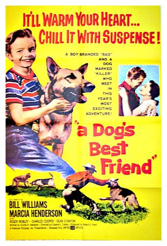 A Dog's Best Friend Poster