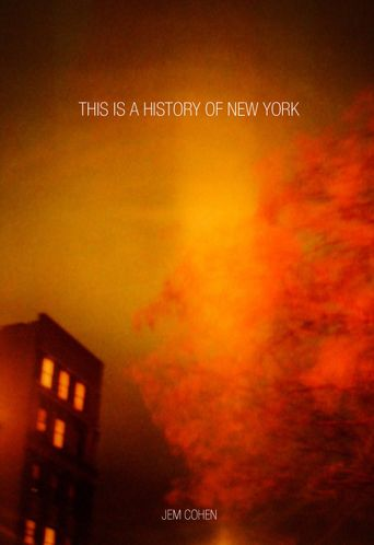 This Is a History of New York Poster