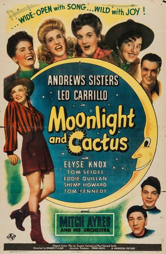 Moonlight and Cactus Poster