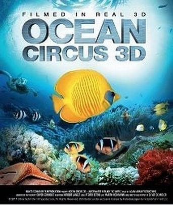 Ocean Circus 3D - Underwater Around the World Poster