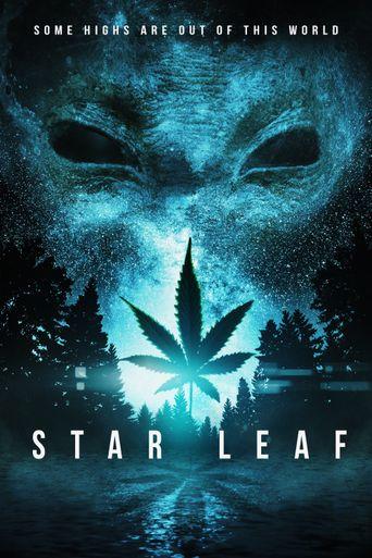 Star Leaf Poster