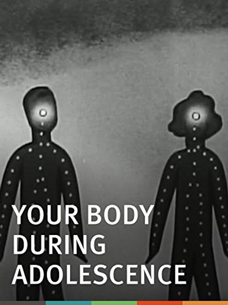 Your Body During Adolescence Poster