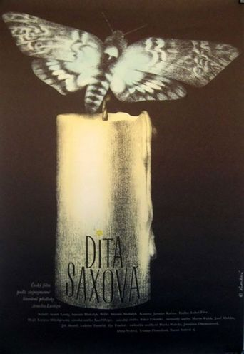 Dita Saxová Poster