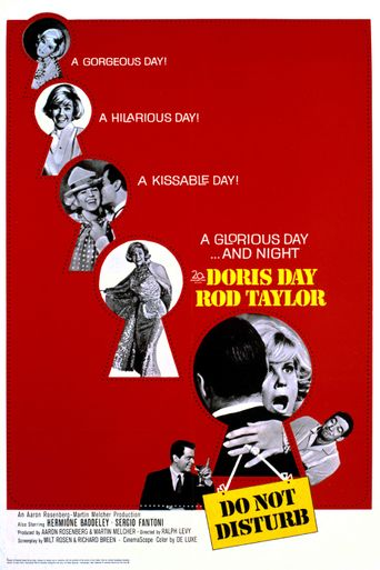 Do Not Disturb Poster