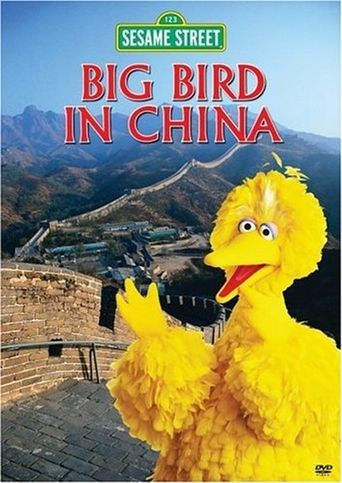Big Bird in China Poster