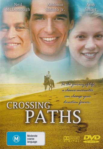 Crossing Paths Poster