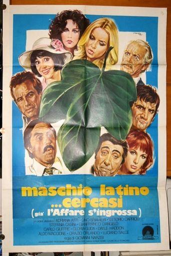 Maschio latino cercasi Poster