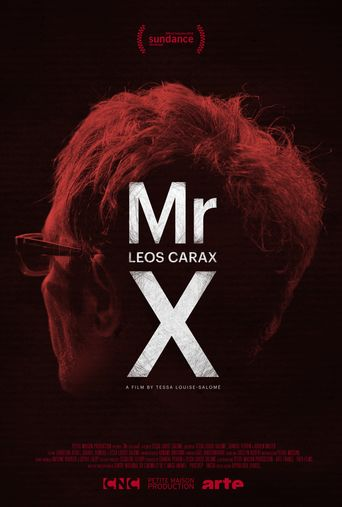 Mr. X Poster