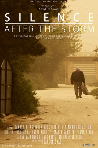 Silence After the Storm Poster