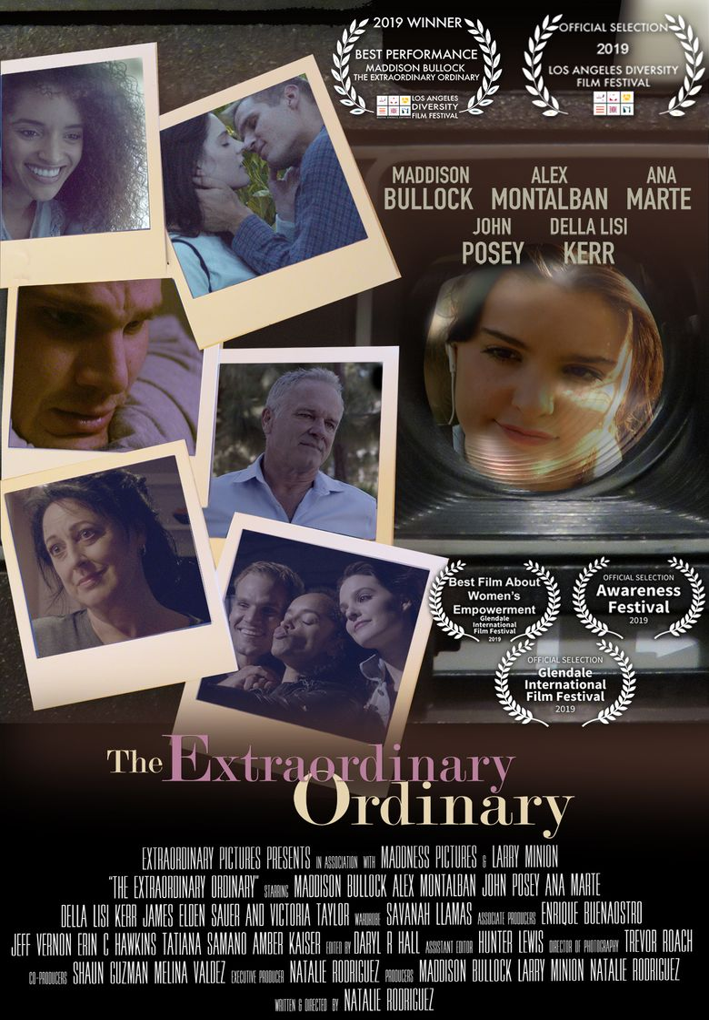 The Extraordinary Ordinary Poster
