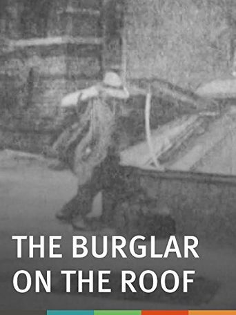 The Burglar on the Roof Poster