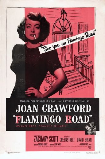 Flamingo Road Poster