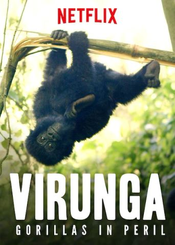 Virunga: Gorillas in Peril Poster