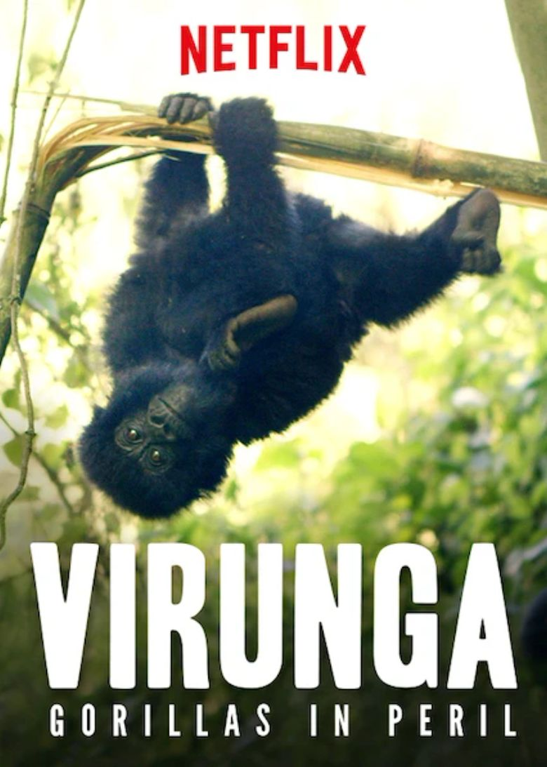 Watch Virunga: Gorillas in Peril
