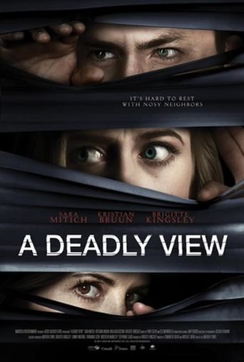 A Deadly View Poster