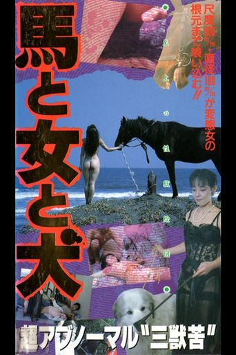 Horse, Woman, Dog Poster