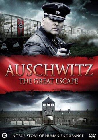 Escape from Auschwitz Poster