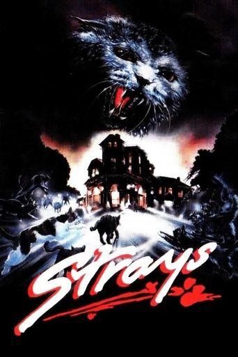 Strays Poster
