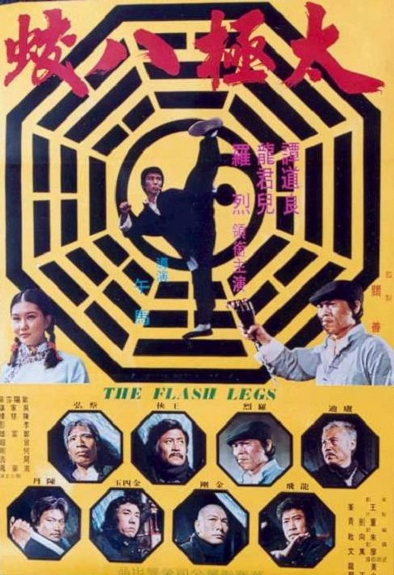 Shaolin Deadly Kicks Poster