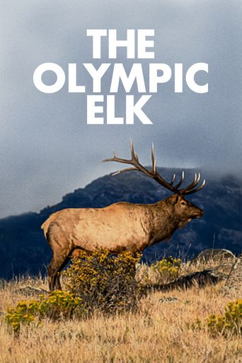 The Olympic Elk Poster