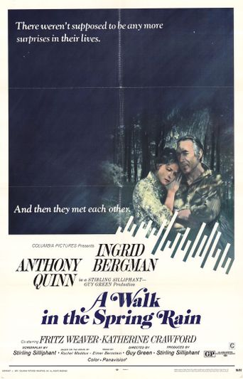 A Walk in the Spring Rain Poster