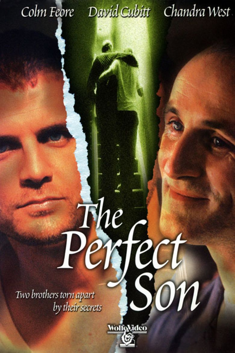 A Perfect Son Poster