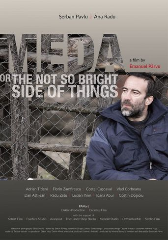 Meda or The Not So Bright Side of Things Poster