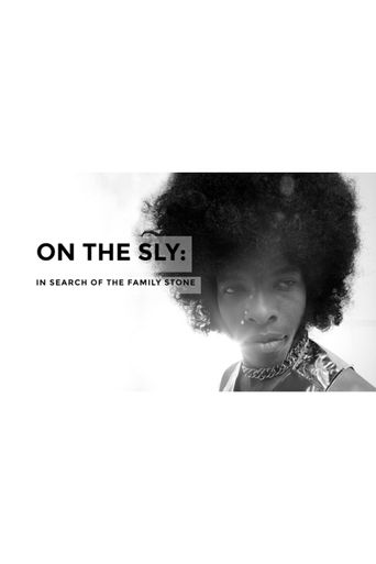 On the Sly: In Search of the Family Stone Poster