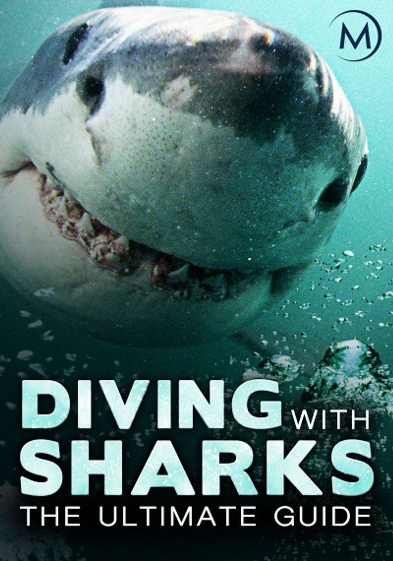 Diving with Sharks: The Ultimate Guide Poster