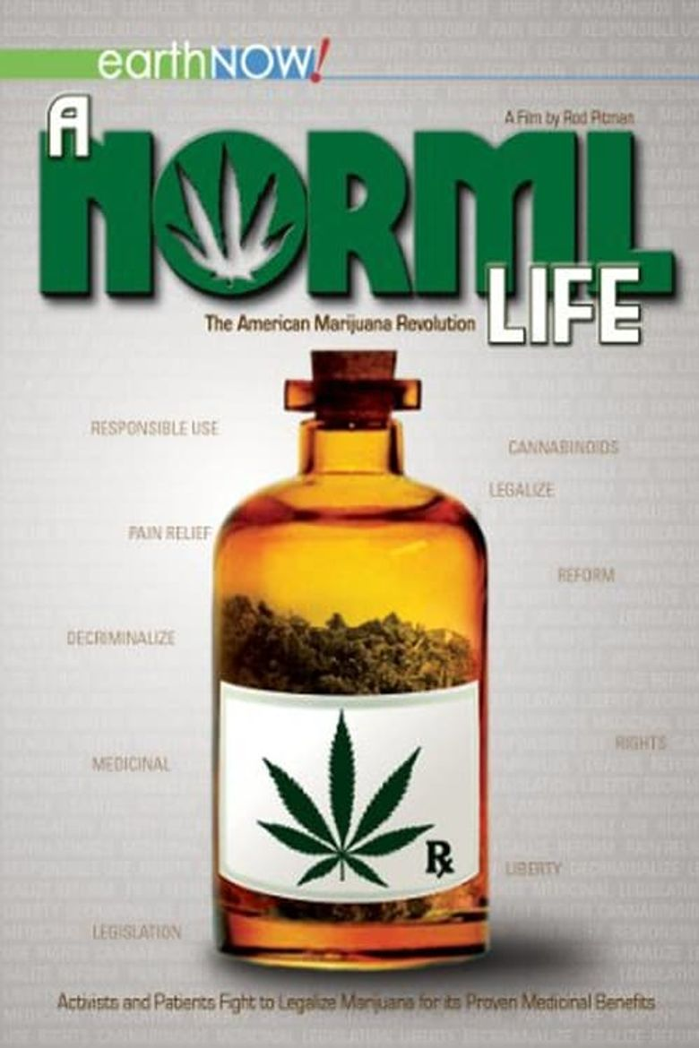 A Norml Life Poster