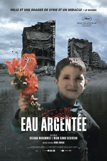 Silvered Water Poster