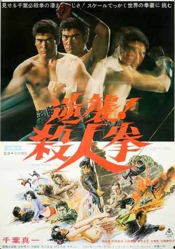 The Street Fighter's Last Revenge Poster