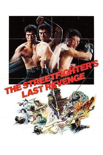 The Street Fighter's Last Revenge Poster
