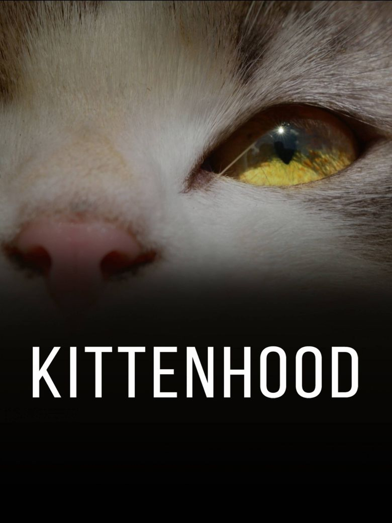Kittenhood Poster