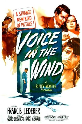 Voice in the Wind Poster