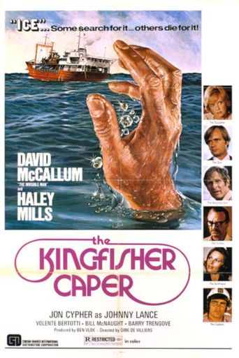 The Kingfisher Caper Poster