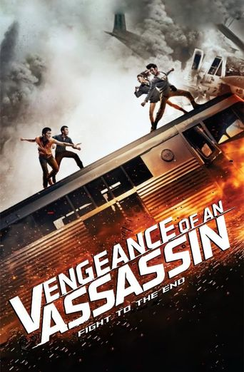 Vengeance of an Assassin Poster