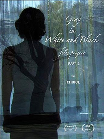 Gray in White and Black Film Project part 2: The Choice Poster