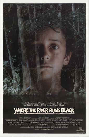 Where the River Runs Black Poster